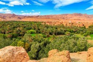 Marrakech to Fes via Dades