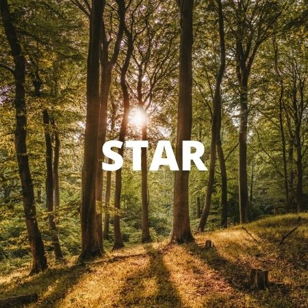 21 Day Travel Insurance » Europe + Extras INSURANCE STAR