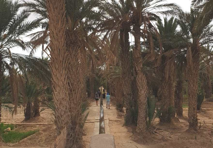 One of the many villages located on the button of Erg Chebbi Dunes, Hassilabied is easily accessible and where you can visit the oasis, and learn how locals plant their veggies just aside the dunes.