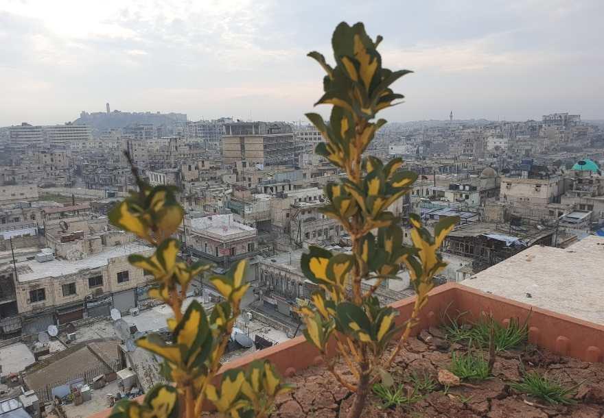 Hotel Riga Palace in Aleppo