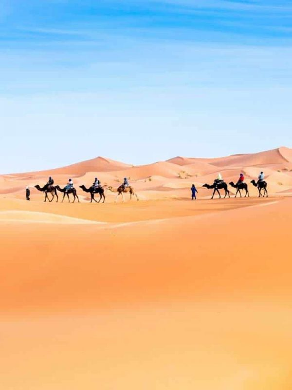 New Year in Morocco Desert tour from Marrakech