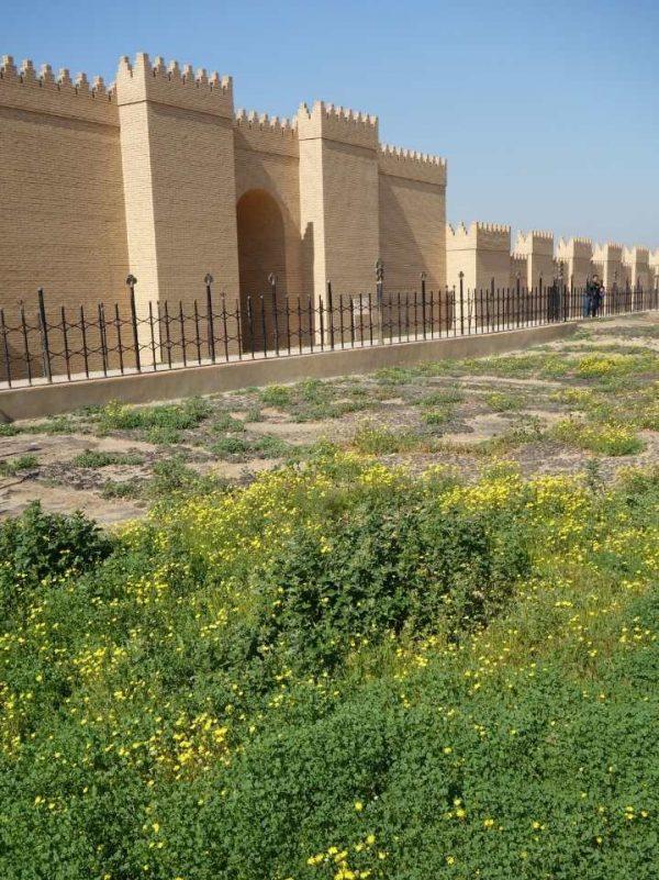 Tour visit babylon Iraq